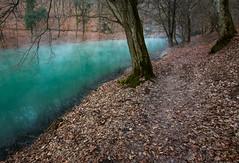 Tengerszem-tó (Gerisz) Tags: tree trees water lake tarn tengerszem türkiz jósvafő aggtelek cold evaporation fog winter párolgás pára fagy freeze tó nature nikon természet manfrotto tél forest erdő