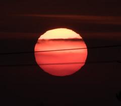 Sunset Little Sandhurst 23 February 2018 (7) (BaggieWeave) Tags: berkshire sandhurst littlesandhurst sunset sun