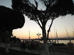 (nanisalleh) Tags: nile river rivernile silhouette sunset trees