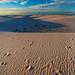 Golden Hour on the Dunes
