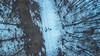 (AleAinaz) Tags: mompantero piemonte italia it incendio valle di susa torino boschi rocciamelone montagna alberi drone dji mavic pro