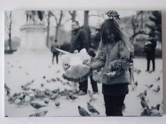 Feed the birds (Lauren Clarke Photography) Tags: tg4 monochrome blackandwhite travelphotography streetportrait streetphotography street paris 50mm18 olympusom10 xp2super400 ilford 35mmfilm