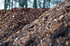 The wood chip mountain