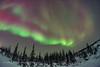 Dipper and Polaris in Aurora (Amazing Sky Photography) Tags: northernlights auroraborealis boreal forest cnsc churchill polaris bigdipper cassiopeia arcturus trees alberta canada
