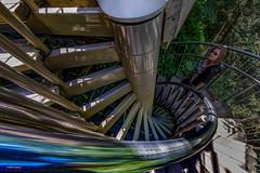 Jo Spiral (Sur Real Mark) Tags: vancouver capilanosuspensionbridgepark 2015 pacificnorthwest sntfamily familyvacation sntgeneral westvancouver britishcolumbia canada ca