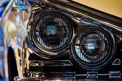 American Dream Cars and Bikes (lesougn) Tags: autoworld bruxelles brussels visitbrussels dream cars bikes goldenyears golden years supercars '50 '60 route66 hollywood vegas mcqueen cadillac eldorado chevrolet corvette musclecars ford mustang exposition sixties fifties diner grease graffiti bullitt easyrider skyline packard studebaker hudson kaiserfrazer buick pontiac generalmotors gm thunderbird torino edsel mercury plymouth dodge desoto chrysler ponycars camaro charger superbird gt usa motos harleydavidson harley davidson nikon d7000 nikkor 18200 oldtimers ancêtres starspangledbanner oldtimer fordmustang gran chevroletcamaro