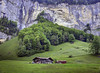Switzerland_0176 (mannmadephotos) Tags: alpine alps cliff countryside eiger europe european grass green high hike hiking jungfrau landmark landscape lauterbrunnen moench mountain mountains nature panorama scenery scenic schilthorn steep swiss switzerland travel vacation valley view
