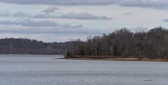 Willow Bay-Lake Barkley_4494 (2) (Porch Dog) Tags: 2017 garywhittington kentucky nikond750 fx nikon200500mm outandabout january winter betweentherivers landbetweenthelakes forest water lake tree sky clouds