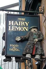 The Hairy Lemon (NottsExMiner) Tags: leinster dublin templebar republicofireland roi pub sign brewery local inn hotel traditionalandnotsotraditionalukpubsigns ukpubsigns pubsigns oldnewpubsandsigns canoneos7d sigma70200mmf28apodghsm newyear