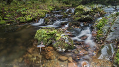 river of the waterfall Cioyo 2.)-2184 (dironzafrancesco) Tags: tamron fluss wasser slta99v natur reise ndfilter tamronsp2470mmf28diusd cascadadecioyo haida lightroomcc vegadeo principadodeasturias spanien es