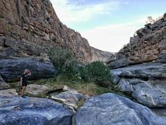 Morning hike through Wadi Damn.