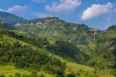Zelený ráj (zcesty) Tags: dosvěta vietnam hory krajina pole rýže terasa vietnam22