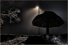 Nachts im Park (der bischheimer) Tags: monochrom nacht laterne bischheim haselbachtal lausitz sachsen park pilz canon derbischheimer