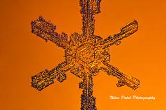IMG_2765 (nitinpatel2) Tags: snowflakes winter snow macro crystal nature nitinpatel