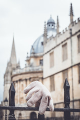 Lost Pink Glove On A Railing Outsice Radcliffe Square, Oxford (Peter Greenway) Tags: railings radcliffecamera studentlife flickr oxforduniversity streetphotography blackrailings stmarys churchspire oxsomething student urban oxforduni oxford glove pinkglove lost landmark iconic architecture woolenglove street