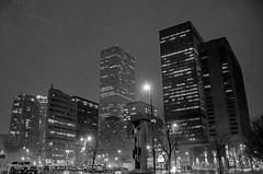 Snowing in the Denver Night Lights (Anna Gurule) Tags: denver denvercolorado citylights city blackandwhite beautiful bw monochrome black white snow snowing