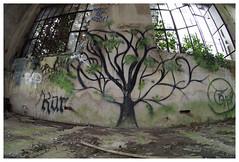 ARBRE DE VIE (LUDOVIC. R) Tags: 7mm5 128 7artisant arbre de vie micro 43 olympus em 10