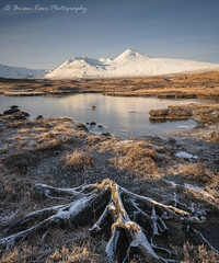 Rannoch Moor - Dead In Winter (.Brian Kerr Photography.) Tags: scotland scottishlandscapes scottish scotspirit scottishhighlands scottishlandscape sony a7rii visitscotland visitbritain briankerrphotography briankerrphoto formatthitech outdoor outdoorphotography opoty nature naturallandscape natural treestump snow ice frozen frost blackmount mountains rannochmoor glencoe mountain landscape water sky zeiss loxia