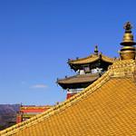 Golden Roof thumbnail