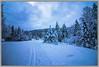 Lac de Lispach (La Bresse - Vosges) (jamesreed68) Tags: canon eos 600d lispach vosges nature hiver 88 france grandest
