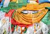 Scripture - Tibetan culture (cattan2011) Tags: landscapeportrait landscape lhasa tibet traveltuesday travelbloggers jokhangtemple 大昭寺 西藏 scripture culture buddhism travel travelphotography