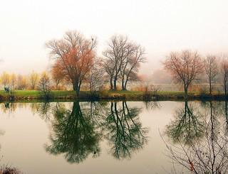 mirroring in the lake