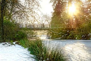 Lac Daumesnil_Paris_Ice, Snow & Sun