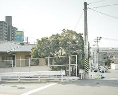 NO MATTER (masaru_yamamoto) Tags: hasselblad x1d x1d50s