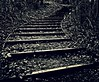 Stepped path (ronramstew) Tags: liverpool merseyside festivalgardens riverside mersey park nature winter path steps