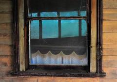 Cobwebs (holly hop) Tags: starnaud decay derelict rusty rustyandcrusty abandoned empty house home windowwednesday windows wooden