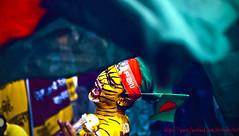 Bangladesh Cricket Supporters (Faruk Hossain Topu) Tags: wallpaper messi leonel tiger bangladeshcricket mirpur train trainline naturalwallpaper