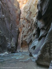 Shadowy Zion Narrows (Annes Travels) Tags: zionnationalpark utah zionnarrows canyon virginriver desert