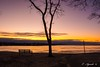 Bench at sunset (E. Aguedo) Tags: beach bench sunset sky warwick winter water tree twilight sand colors clouds