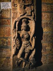a 1000+ old beauty ! (Prabhu B Doss) Tags: prabhubdoss srirangam sriranganathaswamytemple trichy tamilnadu india temple bas relief statue street streetphotographytravel photography