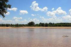 Limpopo River - South Africa (Nick Dean1) Tags: limpoporiver limpopo krugernationalpark crookscorner zimbabwe southafrica river