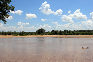 Limpopo River - South Africa