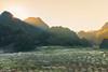 _J5K1448.0118.Nà Ca.Tân Lập.Mộc Châu.Sơn La (hoanglongphoto) Tags: asia asian vietnam northvietnam northwestvietnam landscape scenery vietnamlandscape vietnamscenery vietnamscene mocchaulandscape hdr sunset sun sky pinksky mountain flanksmountain valley plumblossom plumblossomvalley canon canoneos1dsmarkiii canonef70200mmf28lisiiusm tâybắc mộcchâu sơnla phongcảnh hoànghôn nàca thunglũngnàca hoamận thunglũnghoamận hoamậnmộcchâu núi sườnnúi bầutrời bầutrờimàuhồng tânlập