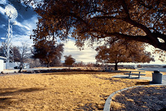 'One Sunny Afternoon', Jolon, California (Infrared Photography- False Colors) (jc reyes) Tags: travels infrared infraredmaster digitalinfrared infraredimages infraredphotos colorinfrared infraredphotography infraredworld falsecolors nikon nikkor invisiblelight skies clouds awesomeshots photography creativeir creativeiramericas creativeireurope landscape california jolon hometown park field grass windmill