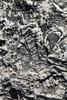 fossil discovery (cyberjani) Tags: adriatic sea istria rock beach fossil