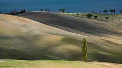 Tuscany 33 (alfapegaso) Tags: toscana