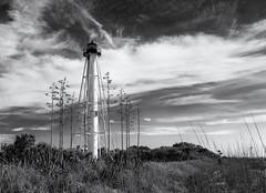 Boca Grande lighthouse (Tim Ravenscroft) Tags: lighthouse bocagrande florida hasselblad hasselbladx1d x1d monochrome blackandwhite blackwhite