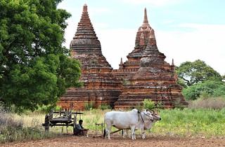 Break Time (MYANMAR)