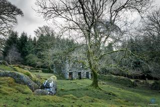 Middleworth Farm - Burrator - Dartmoor