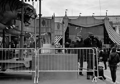 2018☯027 (ruggeroranzani_RR) Tags: analog blackandwhite 35mm film fomapan200 fomadonp leicam6 voigtlandernokton40mmf14classic people tiger venice barrier