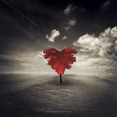 heart tree (Dyrk.Wyst) Tags: beach sand monochrome tree love red manipulation surreal illustration brown vintage retro heartshpe heart lonetree minimalism dreamy fantasy spacious simplicity
