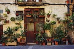 Barcelona (virginiasánchez) Tags: bacelona españa spain cataluña catalonia puerta door streets calles flores flowers plants beautiful