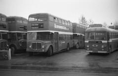 kent - ekrc wfn839 herne bay JL (johnmightycat1) Tags: bus aec kent depot