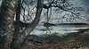 Deer Isle Shore in Winter (D'ArcyG) Tags: maine deerisle island shore bay harbor trees branches winter sea ocean atlantic textured impression dark overcast cloudy