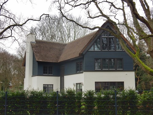 Modern thatched house