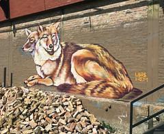 Outfoxed by Libre Hem (wiredforlego) Tags: graffiti mural streetart urbanart aerosolart publicart chicago illinois ord librehem